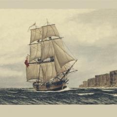 31 HMS Supply
